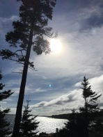 Acadia National Park loop view